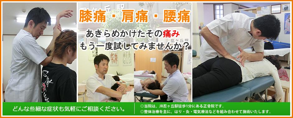 ストレスによる肩痛、原因不明の腰痛や、交通事故後遺症なの症状でお困りの方は当院にご相談ください。